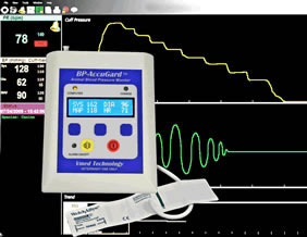 BP-AccuGard Blood Pressure